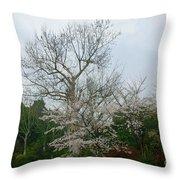 Westlake Park Throw Pillow