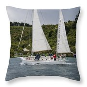Wet---cold---windy Throw Pillow