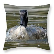 Wet And Wild - Canadian Goose Throw Pillow