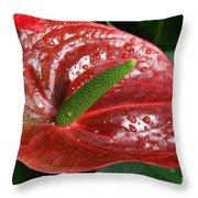 Wet Anthurium Throw Pillow