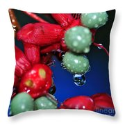Wet Berries Throw Pillow by Kaye Menner