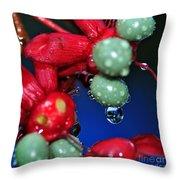 Wet Berries Throw Pillow