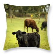 Wet Calf Throw Pillow