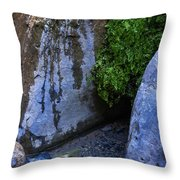 Wet Environments 1 Throw Pillow