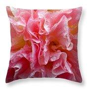 Wet Hollyhock Flower Upclose Throw Pillow