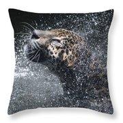 Wet Jaguar  Throw Pillow