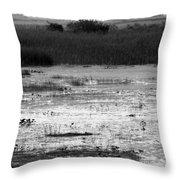 Wet Landscape Throw Pillow