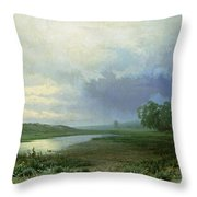 Wet Meadow Throw Pillow
