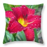 Wet Red Razzmatazz Daylily 1 Throw Pillow