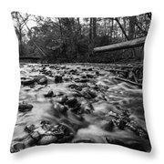 Wet Rocks Throw Pillow