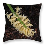 Wet Spring Throw Pillow