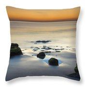 Wet Sunset Reflections Throw Pillow