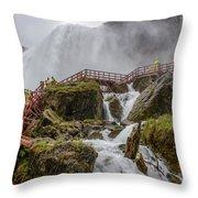 Wet Walk Throw Pillow
