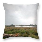 Wetland 1 Throw Pillow