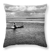 Wetland Area Landscape Throw Pillow