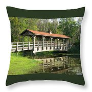 Wetland Footbridge Throw Pillow