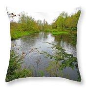 Wetland Greens Throw Pillow