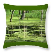 Wetland Reflection Throw Pillow