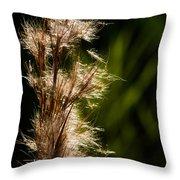 Wetland Sparkles Throw Pillow