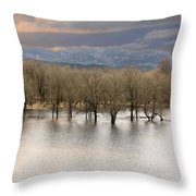 Wetlands At Columbia River Gorge Throw Pillow