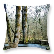 Wetlands In March Throw Pillow