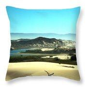 Wetlands In The Dunes Throw Pillow