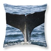 Whale Diving Throw Pillow