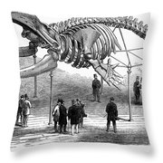 Whale Skeleton, 1866 Throw Pillow