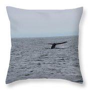 Whale Tail 2 Throw Pillow