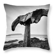 Whalebone Throw Pillow