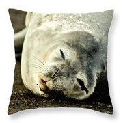 Whaler's Bay Throw Pillow
