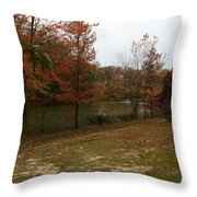 What A Beauitful Day Throw Pillow