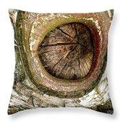 What A Birch Throw Pillow