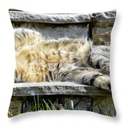 What A Day Throw Pillow