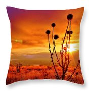 What A Morning Throw Pillow
