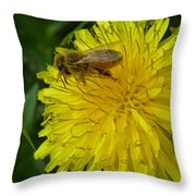 What A Pollenicious Day Throw Pillow