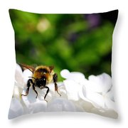What Are You Looking At Throw Pillow