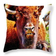 What... Throw Pillow