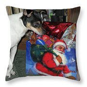 What Did Santa Bring Me Throw Pillow