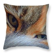 Who Disturbs My Cat Nap? Throw Pillow