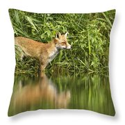 What Does The Fox See Throw Pillow