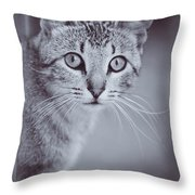What Eyes You Have Throw Pillow