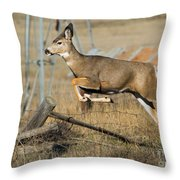 What Fence Throw Pillow