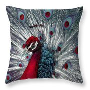 What If - A Fanciful Peacock Throw Pillow