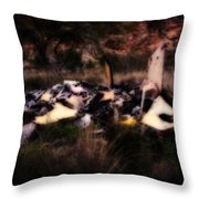 What Is It - Series IIi Throw Pillow