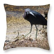 What Is That Throw Pillow