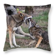 What Nice Teeth You Have Throw Pillow