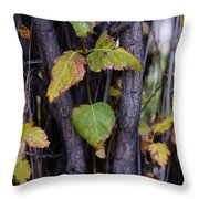 What Once Was Still Remains Throw Pillow