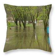 What Road Throw Pillow