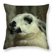 What So Funny Throw Pillow